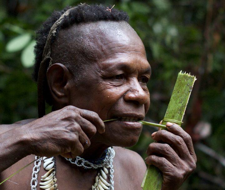 Die Kuruwai leben tief in den Wäldern und sind die letzten Baumhausnomaden Papuas.