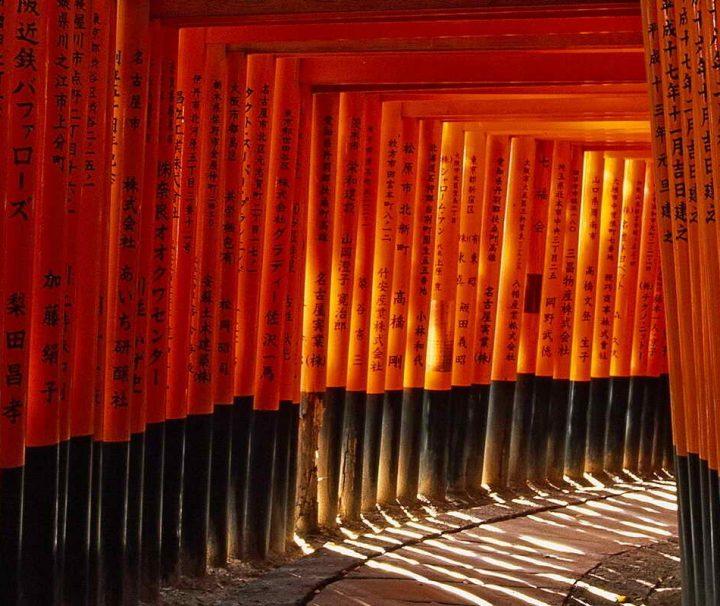 Die Torii-Alleen sind verteilt ueber die ganze Anlage. Sie sind Spenden von Unternehmen, Familien oder Personen.