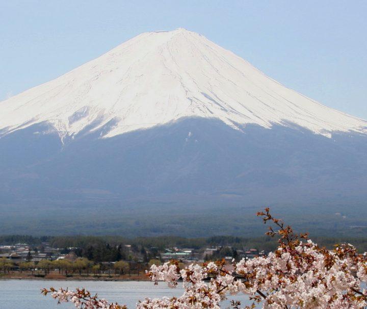 Majestätischer Blick auf den Mount Fuji bei Japans Kirschblüte, der besten Reisezeit für Japan Reisen