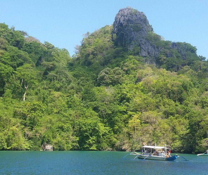Palawan ist nicht nur klassisch schön, die Landschaft besticht durch steile Klippen, grüne Felsen und glasklares Wasser