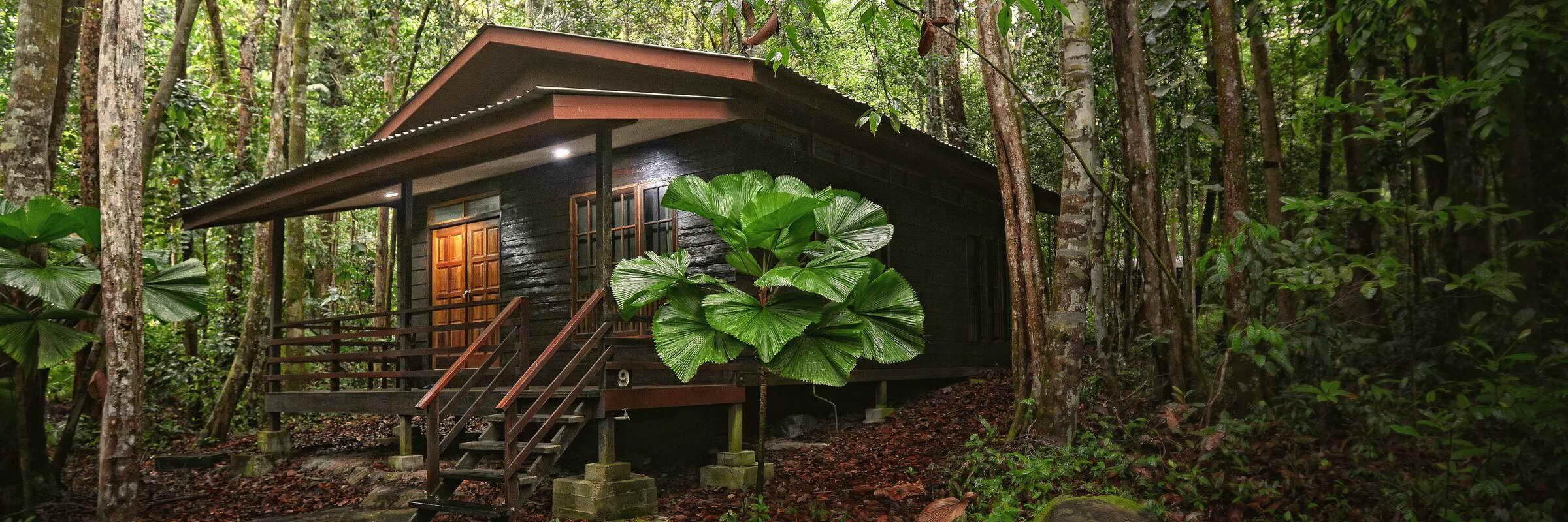 Aussenansicht der idyllisch gelegenenen Cabins inmitten des Regenwaldes im Permai Rainforest Resort