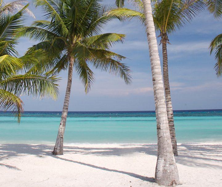 Die Philippinen-Insel Bohol überzeugt mit traumhaft weißen, palmengesäumten Sandstränden.