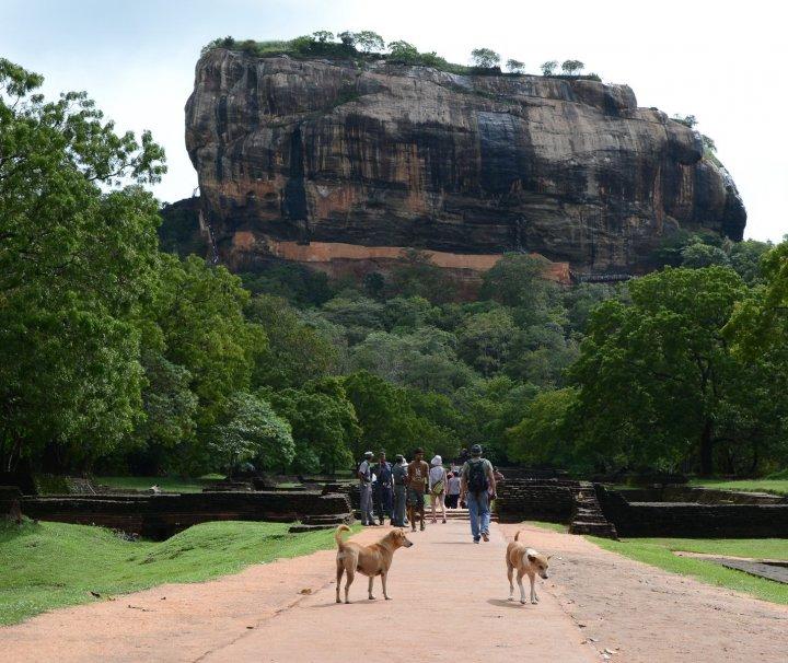 Am Fuße des Sigiriya Rock
