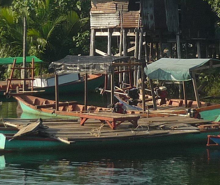 Ihre Kamboscha Reise Wildlife Pass führt Sie nach Chipat