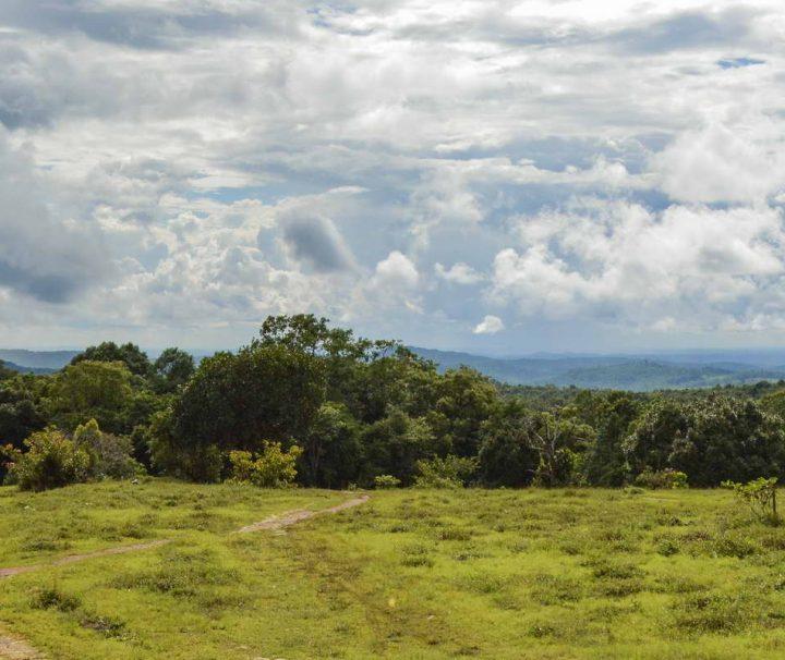 Landschaft in Mondulkiri Kambodscha