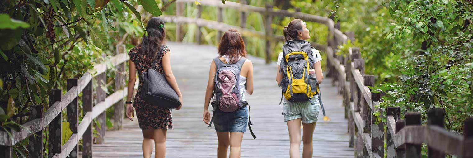 Die stilvollen Holzstege im Permai Rainforest Resort fuehren die Besucher immer wohlbehalten an Ihr Ziel